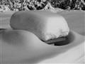 Soft Snow 01