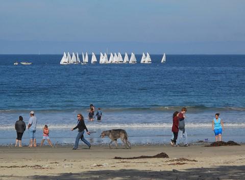 Fun at the Beach ©2011 Derek Dean