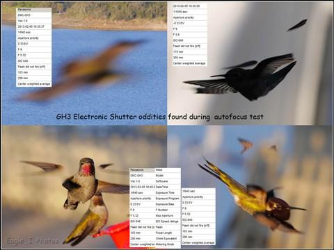 GH3 elect shutter odds w EXIF1280p