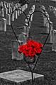 Vicksburg Civil War Cemetery