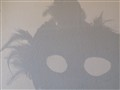 Mask Shadow