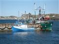 fishing boat in Twillingate Newfoundland