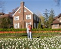 Love amongst the Tulips
