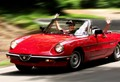 Happiness is an Alfa spider