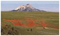 Red dirt composed of the Chugwater Formation sits exposed atop Rattlesnake Mountain NW of Cody, Wyoming, USA.  The limestone mountain in the middle-ground is Heart Mtn, north of Cody.