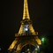 EiffelTower_May202014