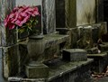 Belongs to the ages, but not forgotten. Lafayette Cemetery No. 1 in New Orleans,La