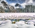 COOK'S MEADOW--YOSEMITE VALLEY
