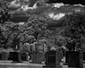 Grove St Graveyard Infrared (R72) P8050108 v3