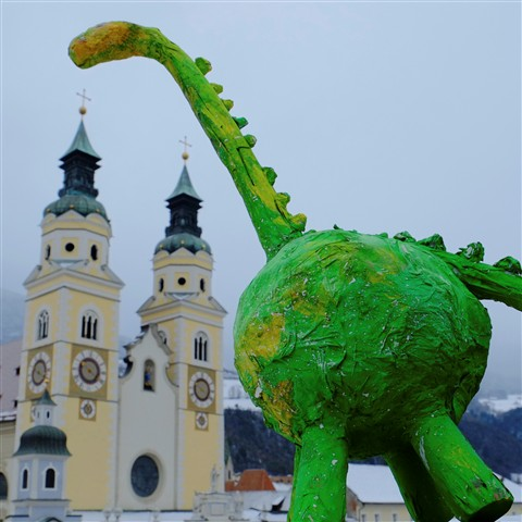 Maggy's Longneck meets Brixen Cathedral #1