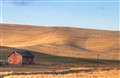 Palouse farm-November 13, 2011-002