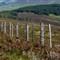 2011-07-26-Highlands-Fence-03712