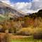 Abruzzo Foliage