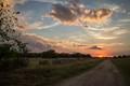 Allen Sunset