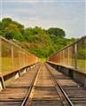 Forest Park Miniature Train Tracks