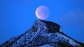 Total Lunar Eclipse, 1/31/18