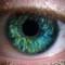 Eye Macro 2015