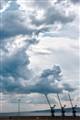 stormy cranes