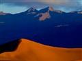 dune (1 of 1)