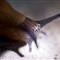 2007-06-23 Slug 23
