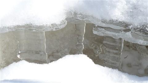 Winter stalactite