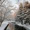 eee2  1 Winters Snow FEB_0701Feb  2021  Deep PRIM DxO