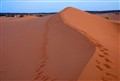 Hike Sahara!