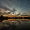 Lilydale Lake-100