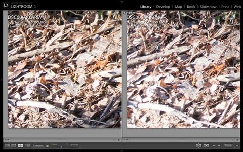 Screen Shot 2012-12-23 at 2.36.03 PM