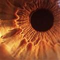 Look into my eye ...