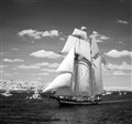 Welcoming a Tall Ship