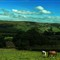 A Bit of English Countryside