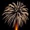 Fireworks Palm Tree
