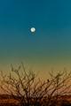 Moon at Sunset Cerrillos, NM