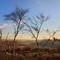 2016-02-24--0575 B Nr Owler Tor Hathersage