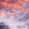 airplane@sunset