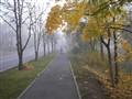 migla6+  24.10. 2011.