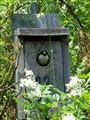Bluebird box 11