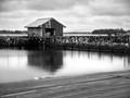 Beals Island, Maine. Lobster pound.
