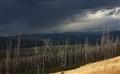 Storm - yellowstone