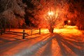 Path by winter