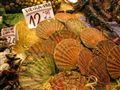 Shellfish, Barcelona market