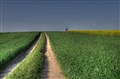 sreet green - the way