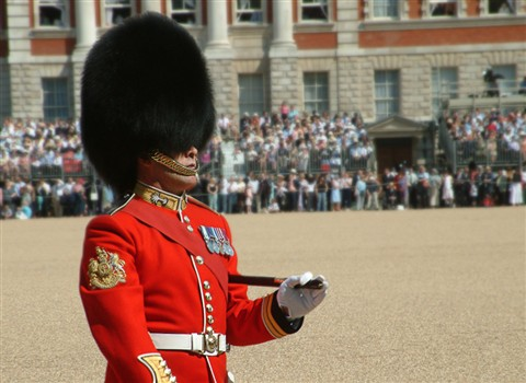 The Regimental Sergeant Major