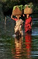 Young rural Indian women crossing the river...