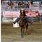 horsey03