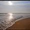 beachwavefinalweb