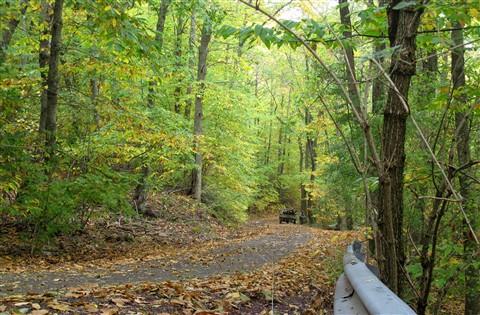 A narrow path downhill