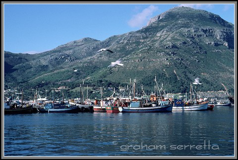 Hout-Bay-Harbour-2