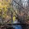 Brook from Farmington Heritage Trail